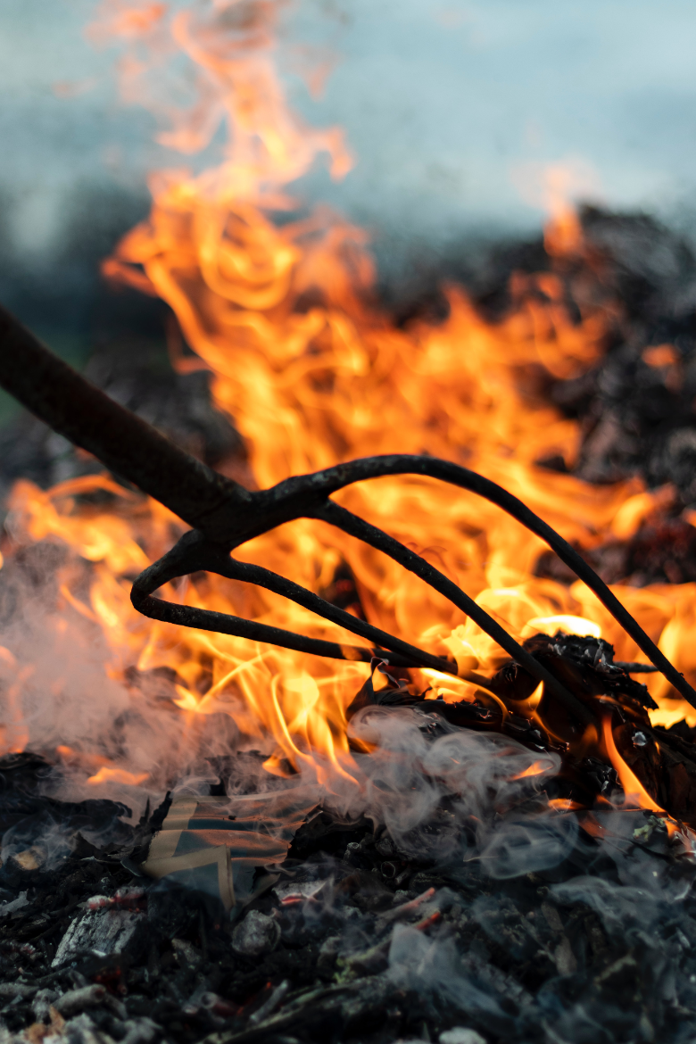 My Adventure Book: How to Build a Campfire a Step-by-step ...